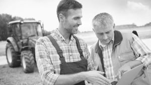 Terminating a Lease Under The Agricultural Holdings Act 1986