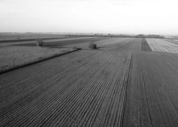 Terminating a Lease Under The Farm Business Tenancy (FBT)